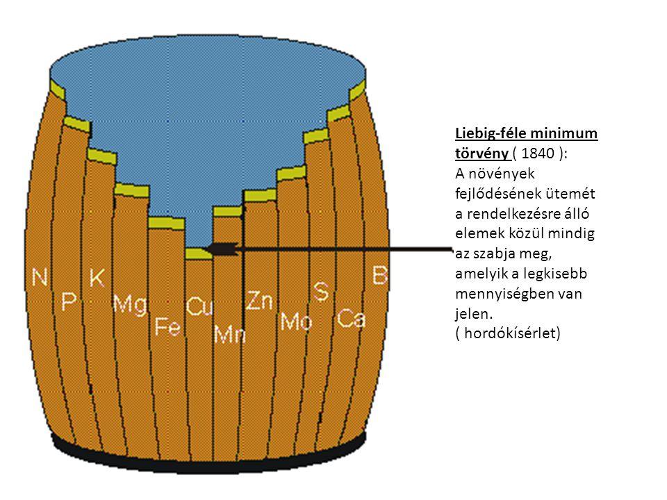 Liebig-féle minimum törvény ( 1840 ):