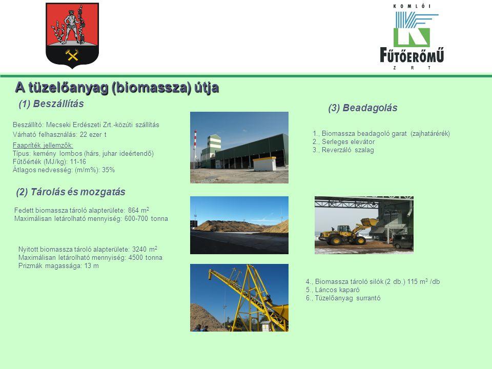 A tüzelőanyag (biomassza) útja