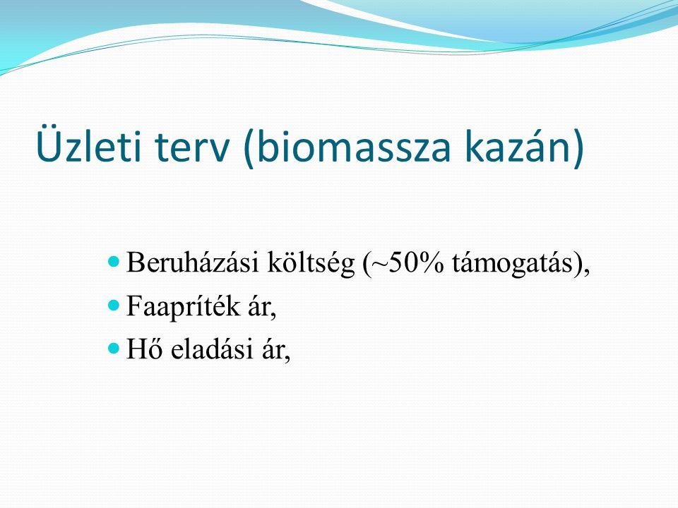 Üzleti terv (biomassza kazán)