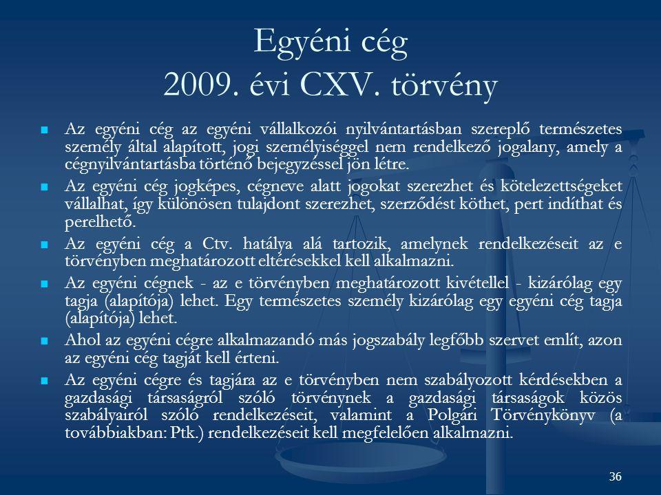 Egyéni cég 2009. évi CXV. törvény