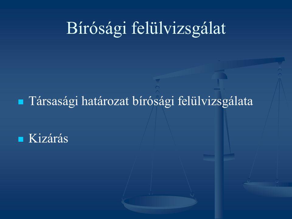 Bírósági felülvizsgálat