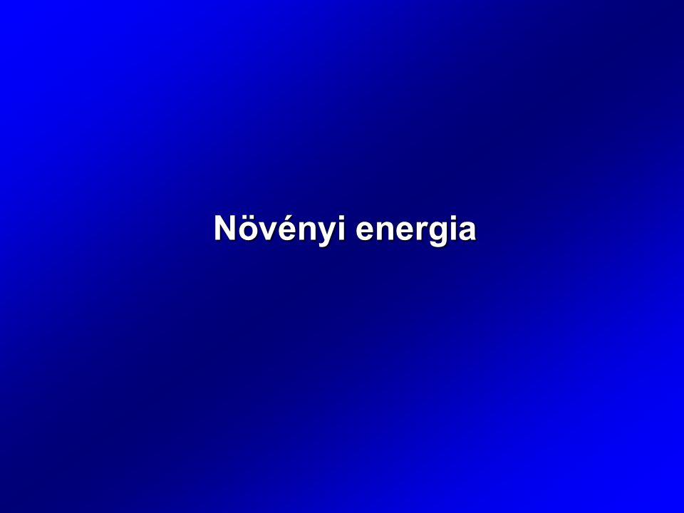 Növényi energia