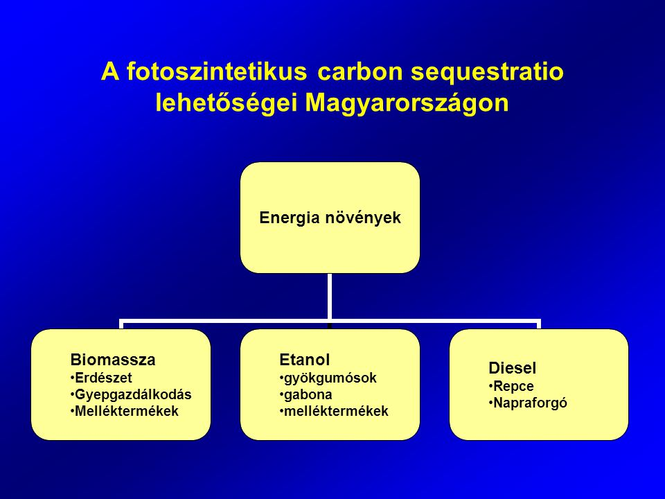 A fotoszintetikus carbon sequestratio lehetőségei Magyarországon