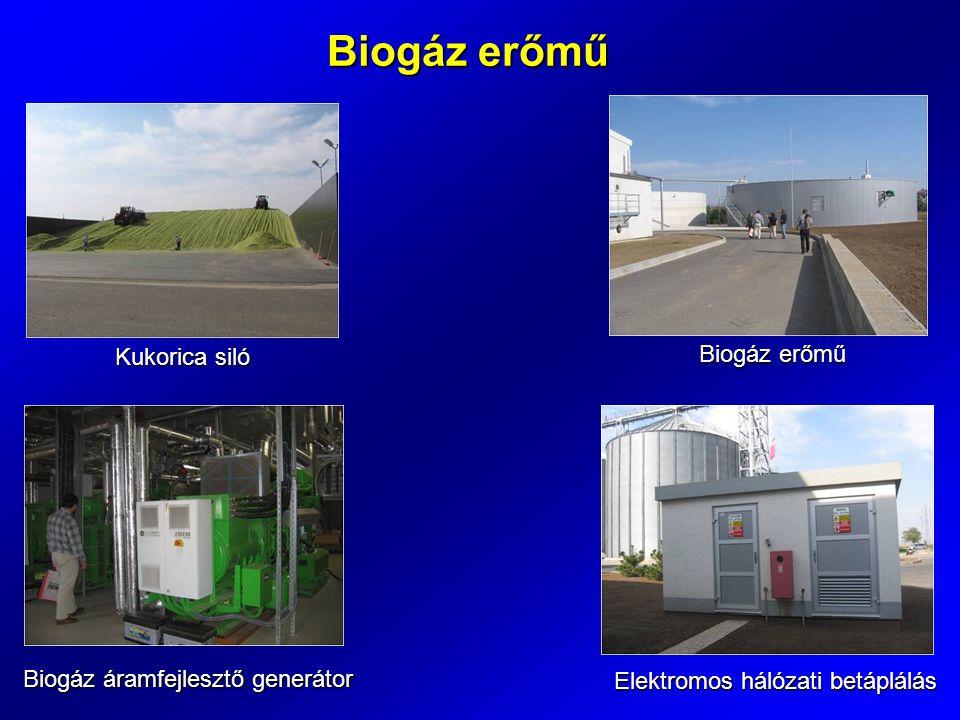 Biogáz erőmű Kukorica siló Biogáz erőmű Biogáz áramfejlesztő generátor