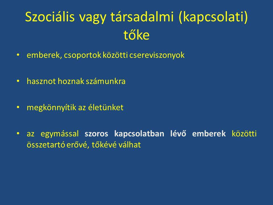 Szociális vagy társadalmi (kapcsolati) tőke