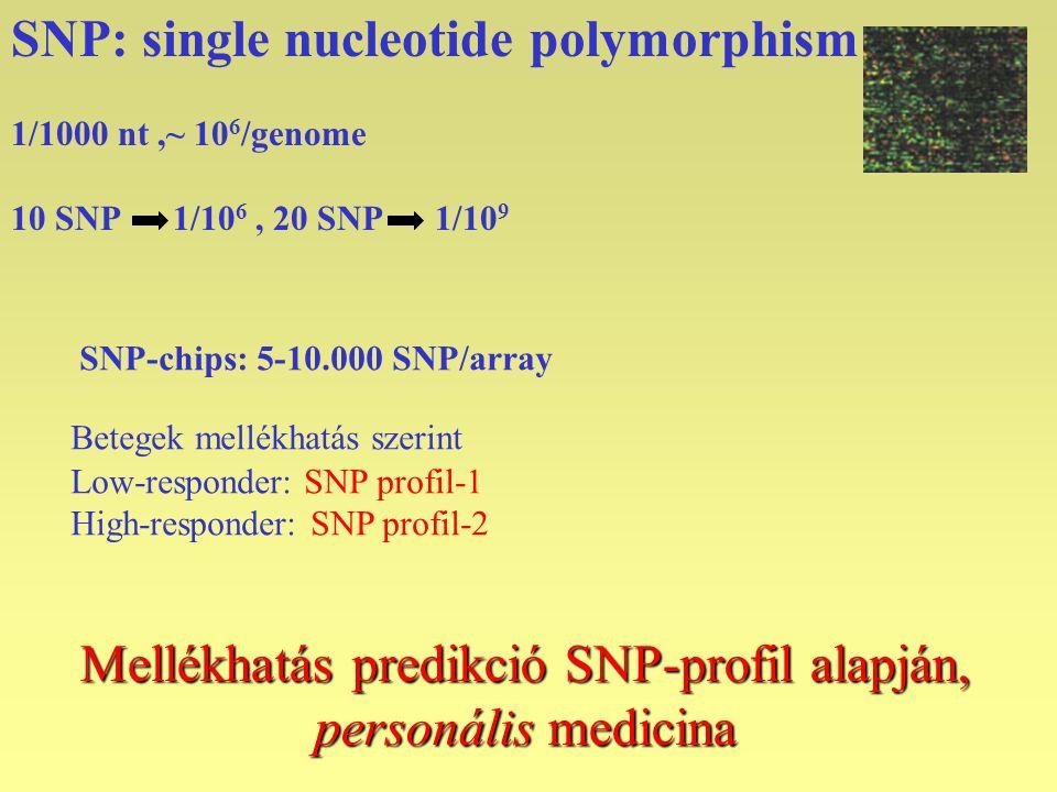 Mellékhatás predikció SNP-profil alapján,