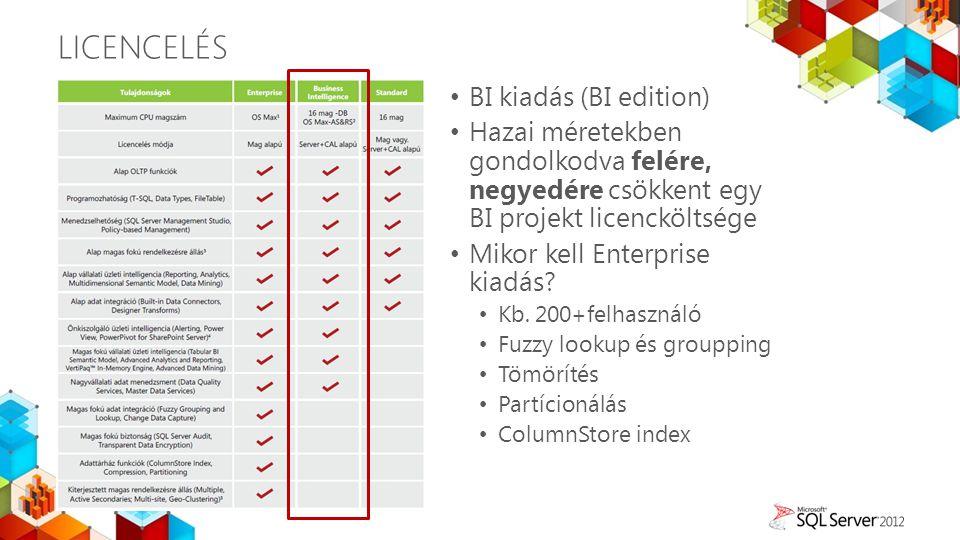 LicenCelés BI kiadás (BI edition)