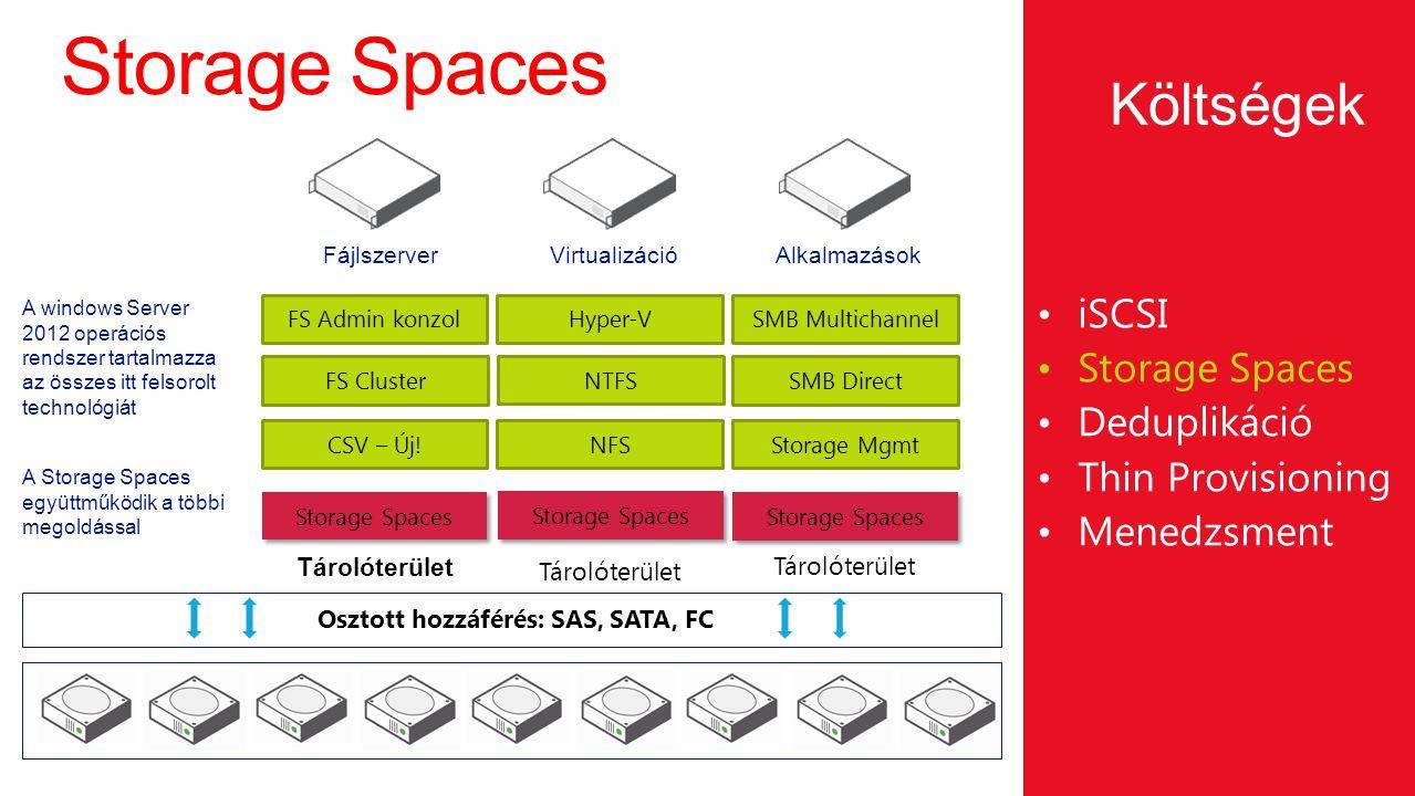 Osztott hozzáférés: SAS, SATA, FC