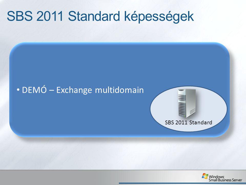 SBS 2011 Standard képességek