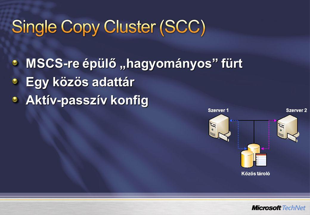 Single Copy Cluster (SCC)