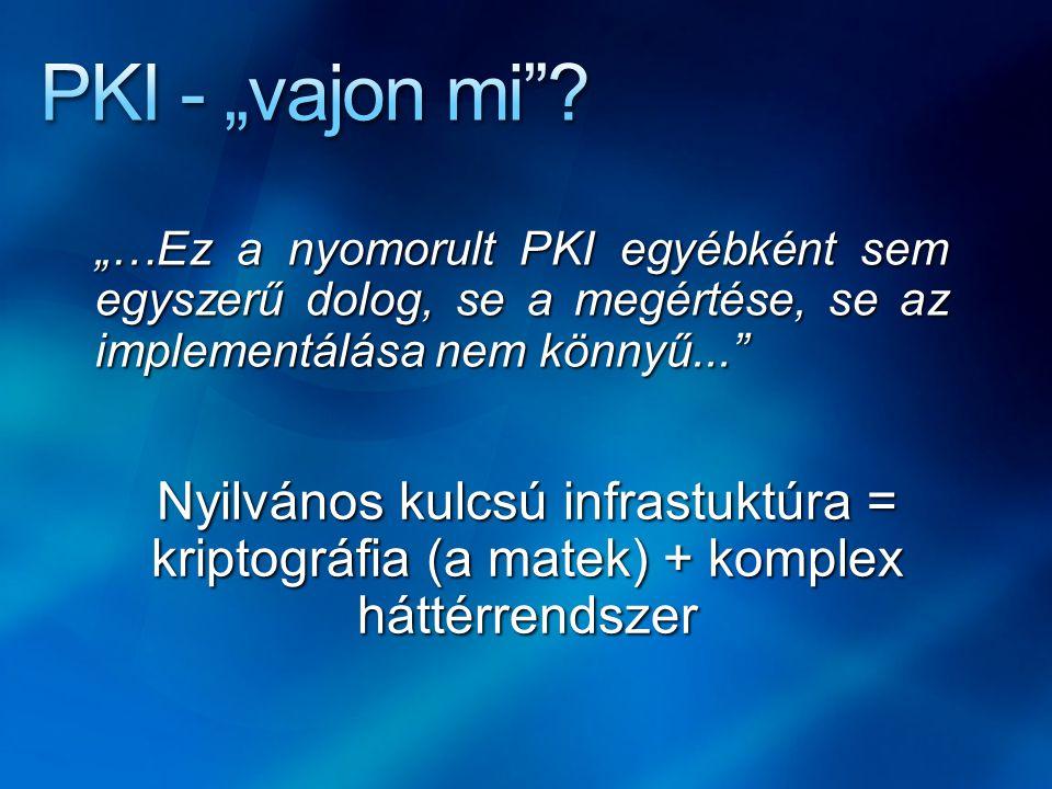 """PKI - """"vajon mi """"…Ez a nyomorult PKI egyébként sem egyszerű dolog, se a megértése, se az implementálása nem könnyű..."""