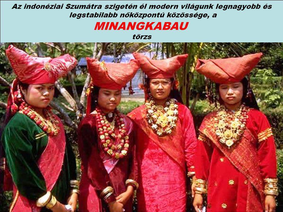 Az indonéziai Szumátra szigetén él modern világunk legnagyobb és