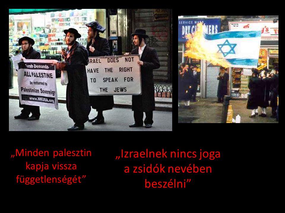 """""""Izraelnek nincs joga a zsidók nevében beszélni"""