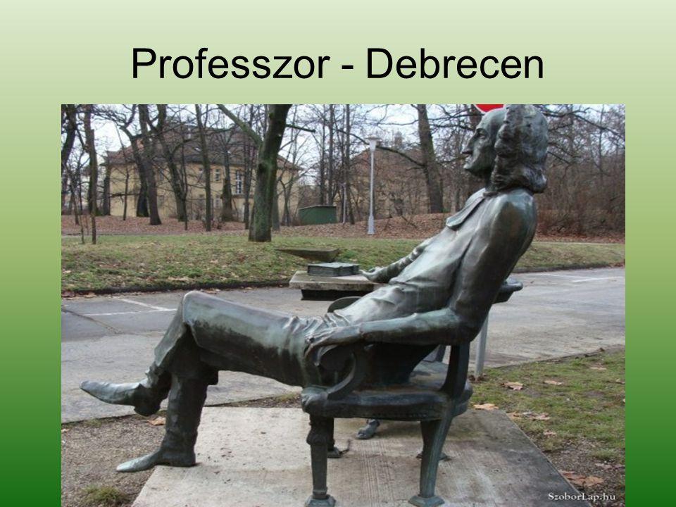 Professzor - Debrecen