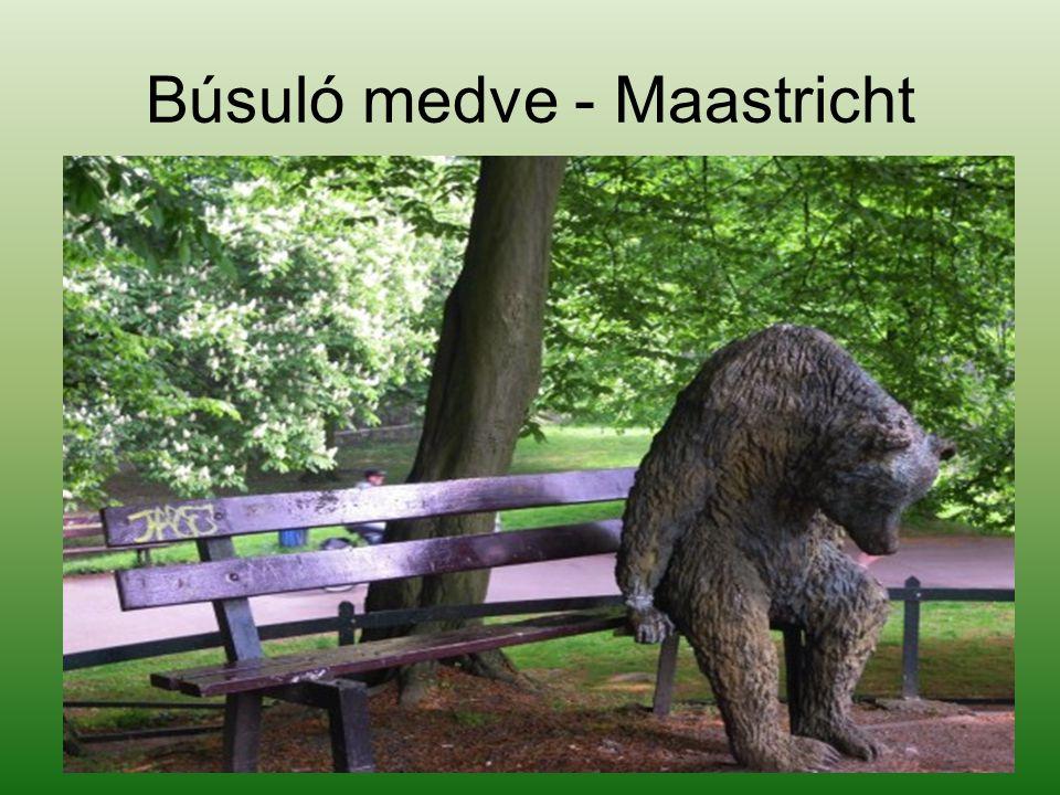 Búsuló medve - Maastricht