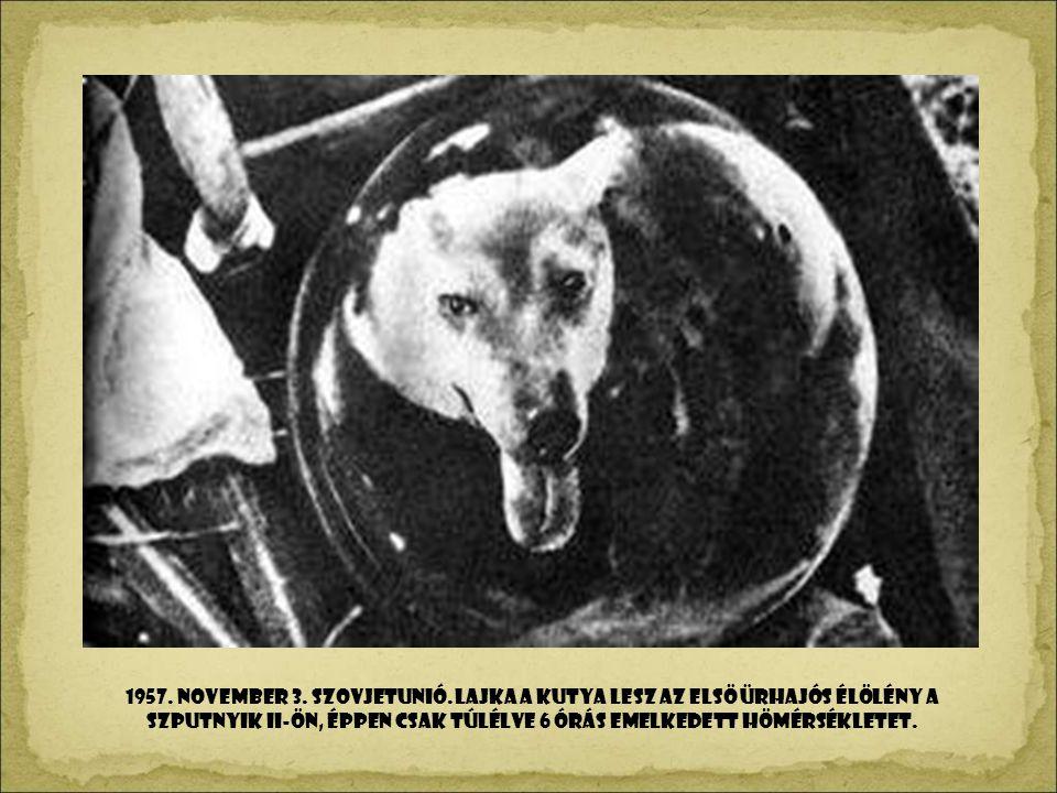 1957. NOVEMBeR 3. Szovjetunió.