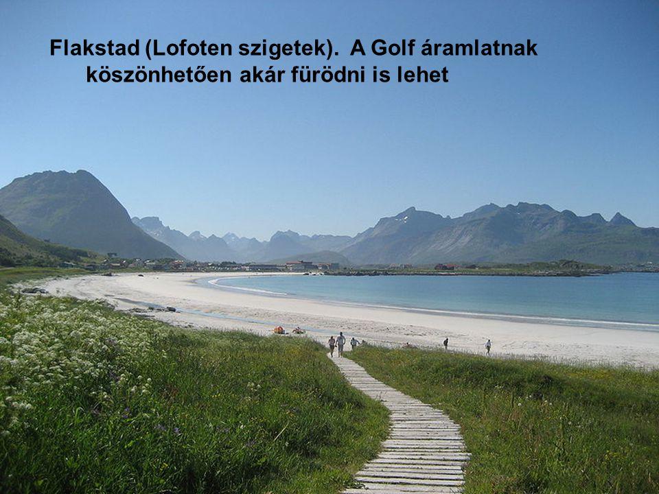 Flakstad (Lofoten szigetek). A Golf áramlatnak