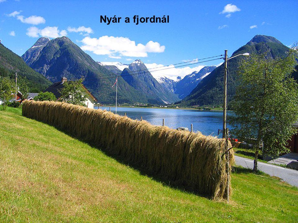Nyár a fjordnál