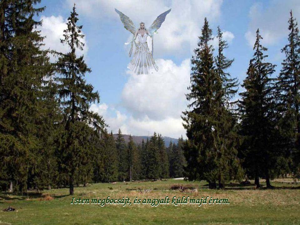 Isten megbocsájt, és angyalt küld majd értem.