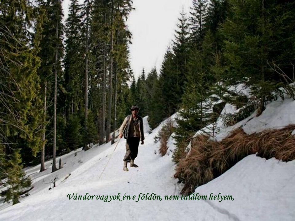Vándor vagyok én e földön, nem találom helyem,