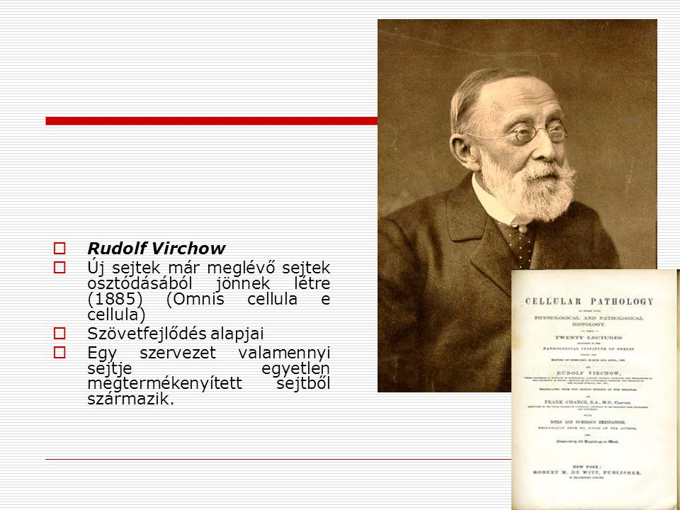 Rudolf Virchow Új sejtek már meglévő sejtek osztódásából jönnek létre (1885) (Omnis cellula e cellula)