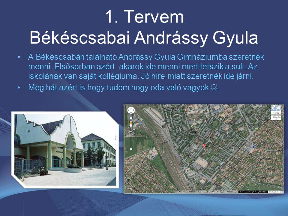 1. Tervem Békéscsabai Andrássy Gyula