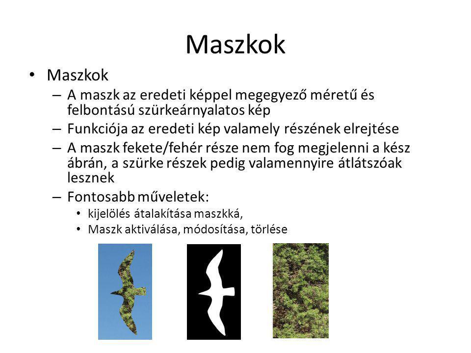 Maszkok Maszkok. A maszk az eredeti képpel megegyező méretű és felbontású szürkeárnyalatos kép.