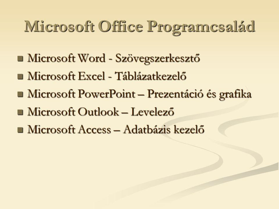 Microsoft Office Programcsalád