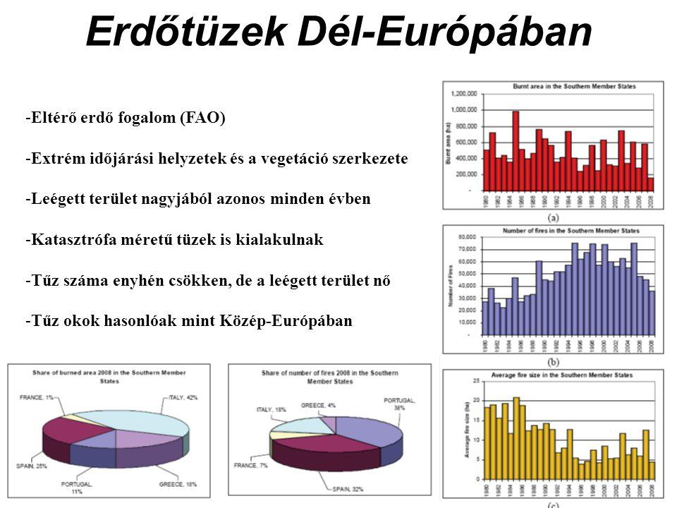 Erdőtüzek Dél-Európában