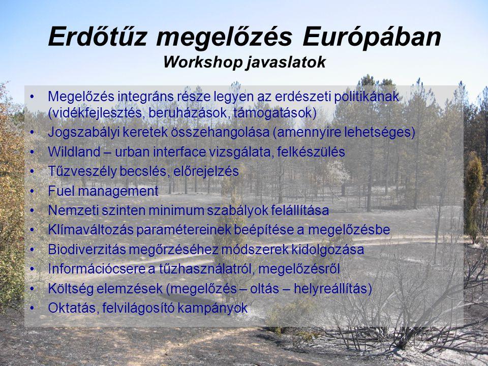 Erdőtűz megelőzés Európában Workshop javaslatok