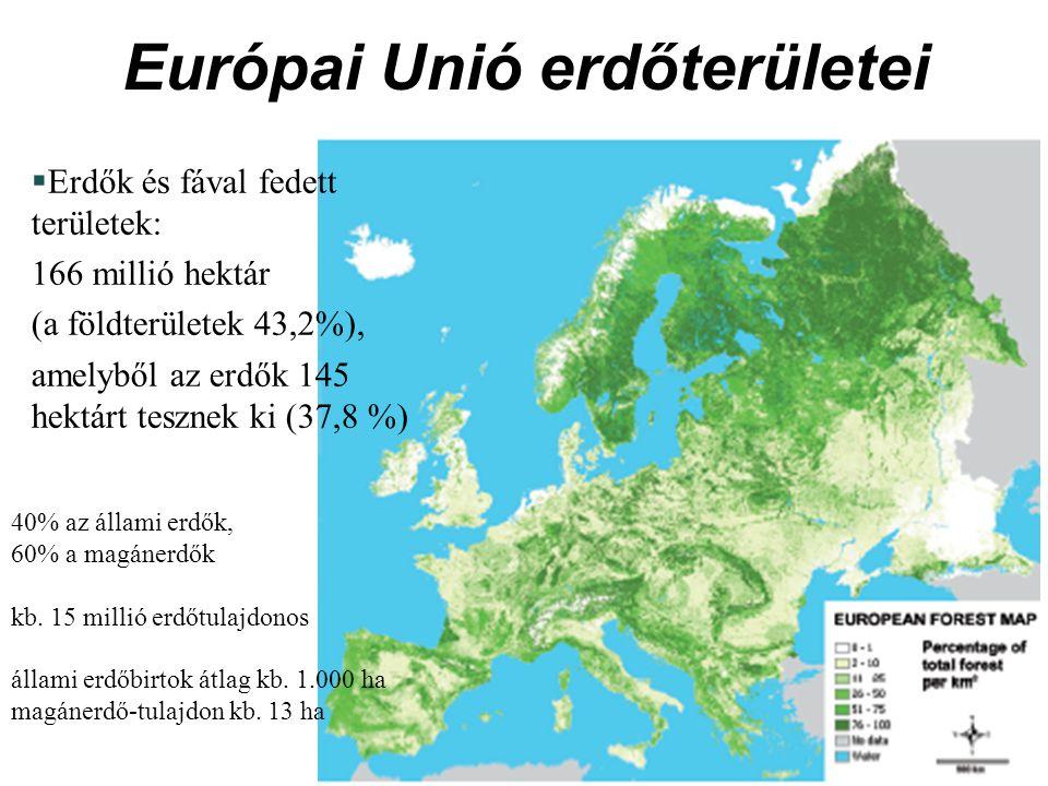 Európai Unió erdőterületei