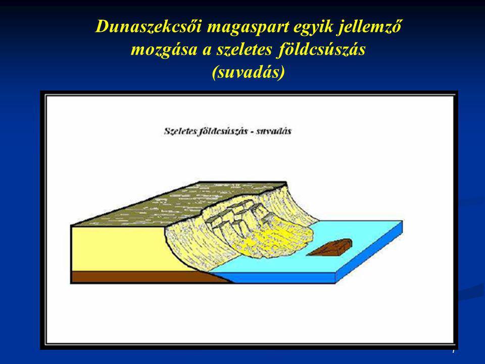 Dunaszekcsői magaspart egyik jellemző mozgása a szeletes földcsúszás (suvadás)