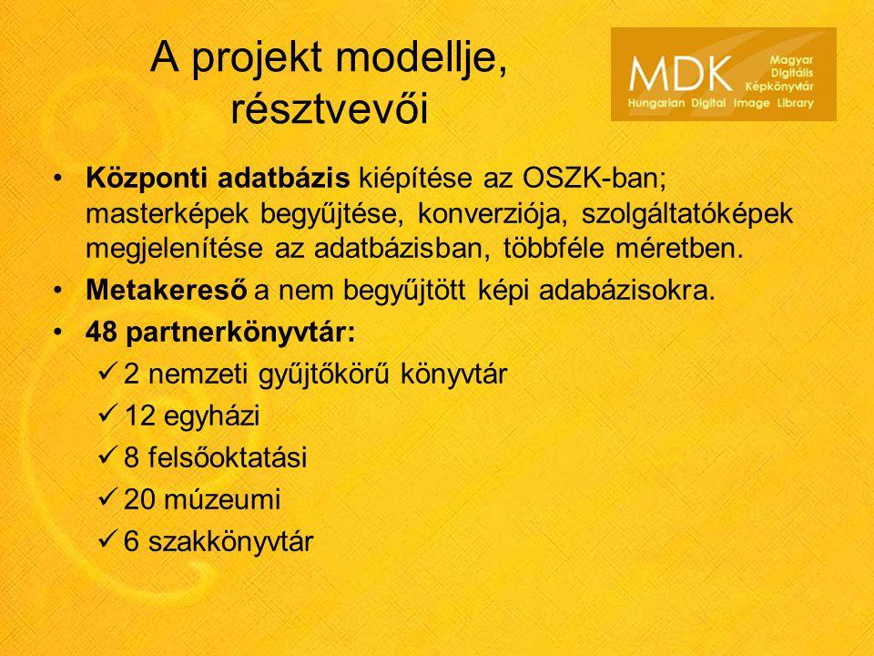 A projekt modellje, résztvevői