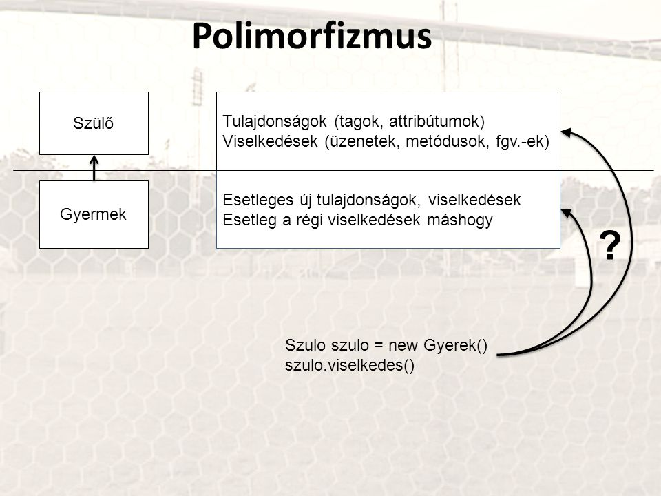 Polimorfizmus Szülő Tulajdonságok (tagok, attribútumok)