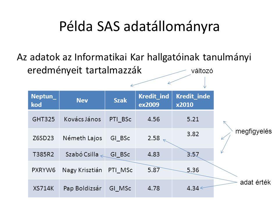 Példa SAS adatállományra