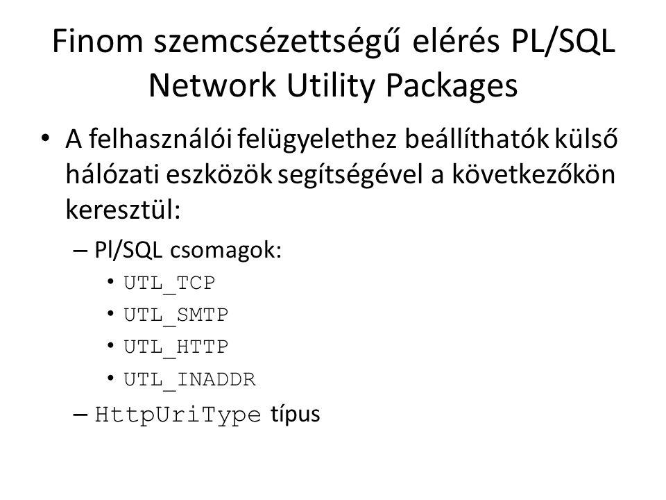 Finom szemcsézettségű elérés PL/SQL Network Utility Packages