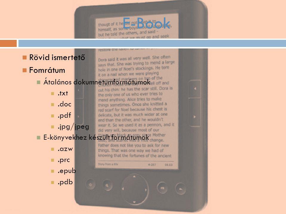 E-Book Rövid ismertető Fomrátum Átalános dokumnetumformátumok .txt