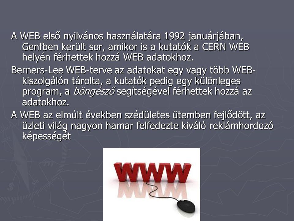 A WEB első nyilvános használatára 1992 januárjában, Genfben került sor, amikor is a kutatók a CERN WEB helyén férhettek hozzá WEB adatokhoz.
