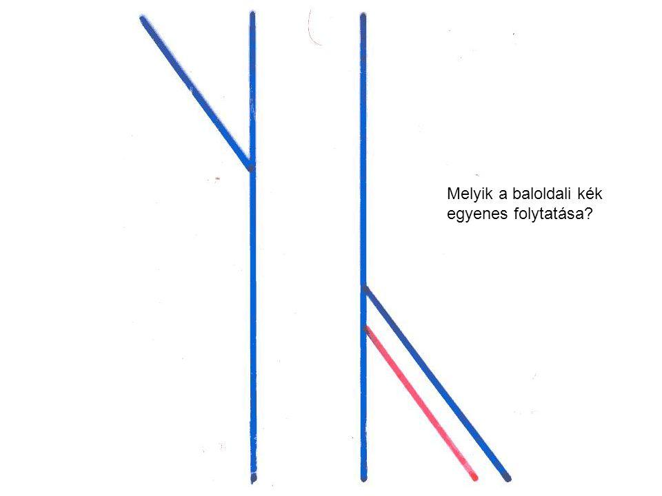 Melyik a baloldali kék egyenes folytatása
