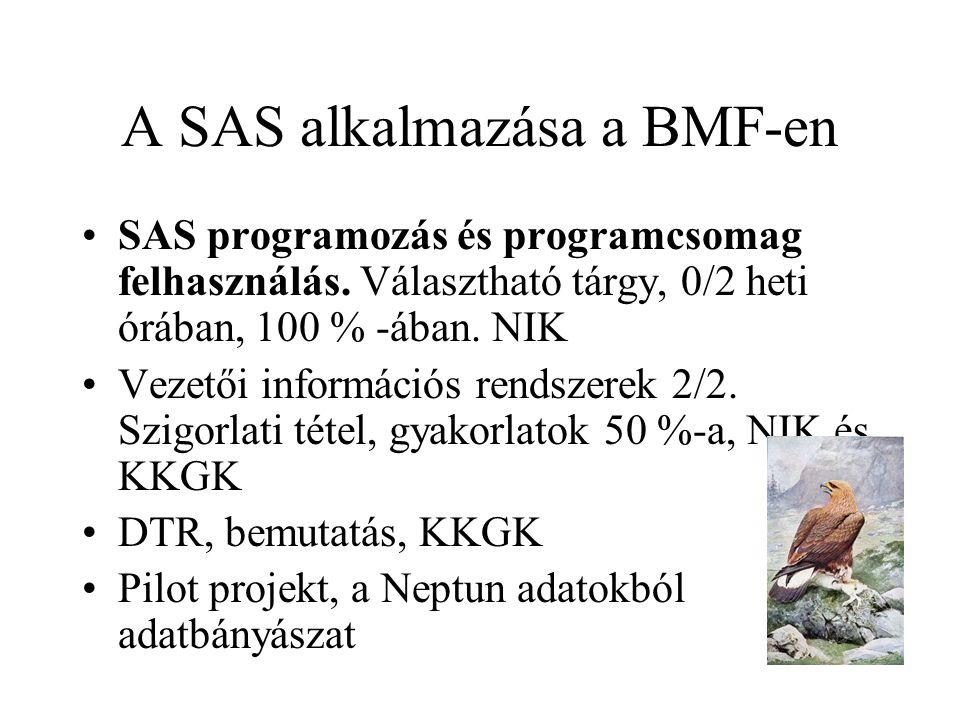 A SAS alkalmazása a BMF-en