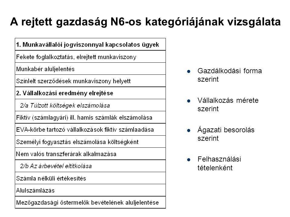 A rejtett gazdaság N6-os kategóriájának vizsgálata