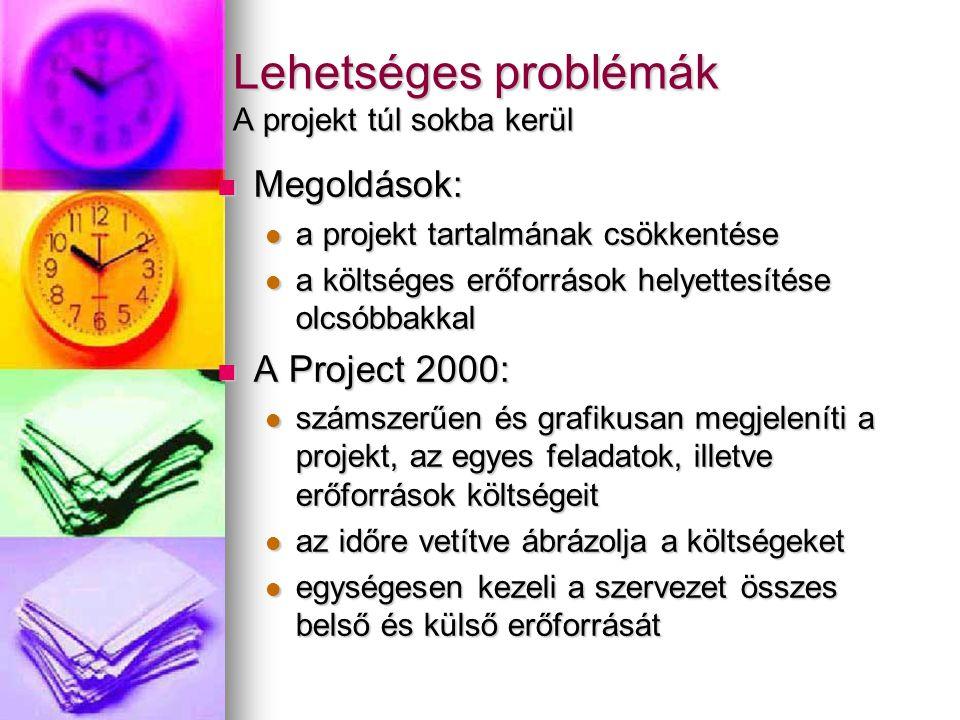 Lehetséges problémák A projekt túl sokba kerül