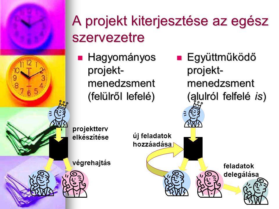 A projekt kiterjesztése az egész szervezetre