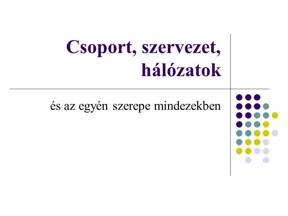 Csoport, szervezet, hálózatok
