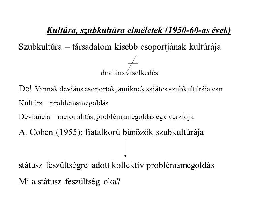 Kultúra, szubkultúra elméletek (1950-60-as évek)