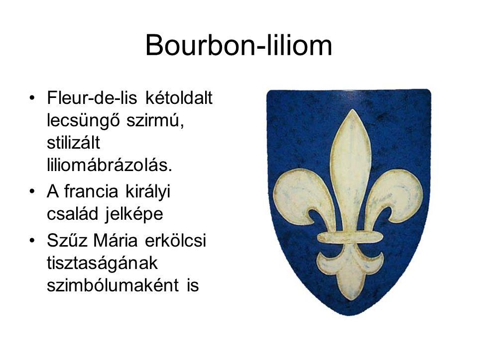 Bourbon-liliom Fleur-de-lis kétoldalt lecsüngő szirmú, stilizált liliomábrázolás. A francia királyi család jelképe.