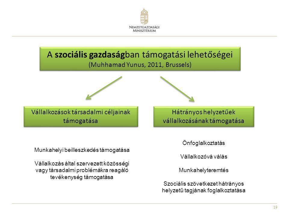 A szociális gazdaságban támogatási lehetőségei (Muhhamad Yunus, 2011, Brussels)