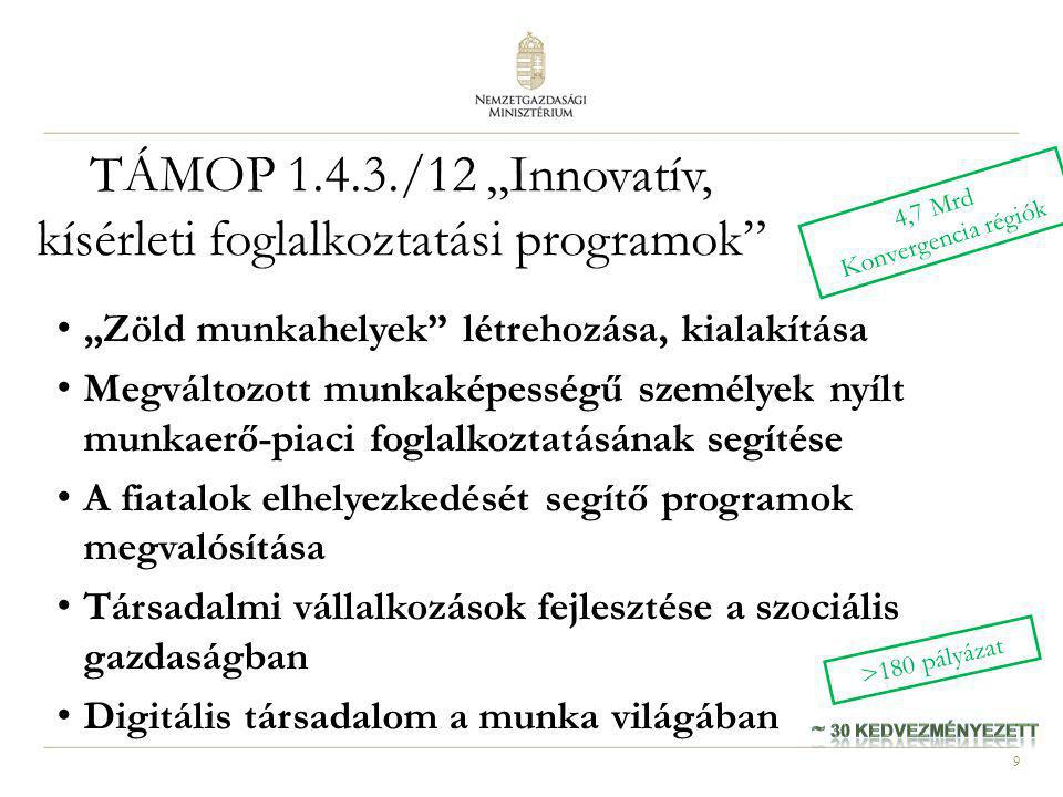 """TÁMOP 1.4.3./12 """"Innovatív, kísérleti foglalkoztatási programok"""