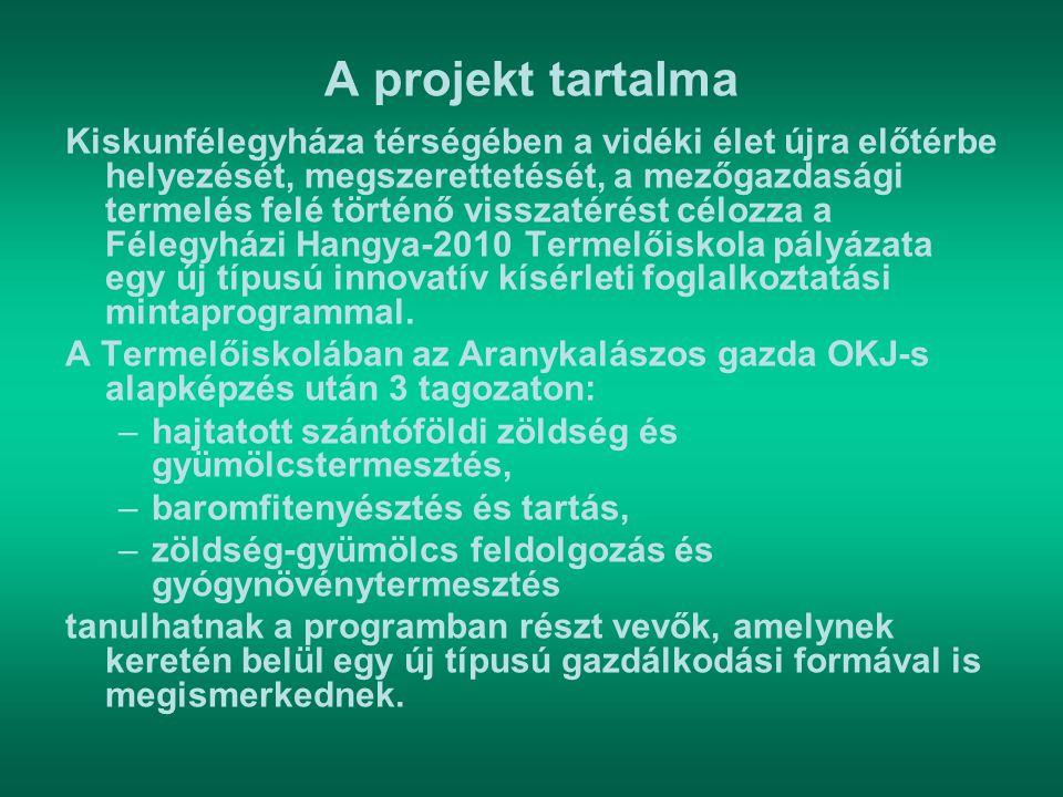 A projekt tartalma
