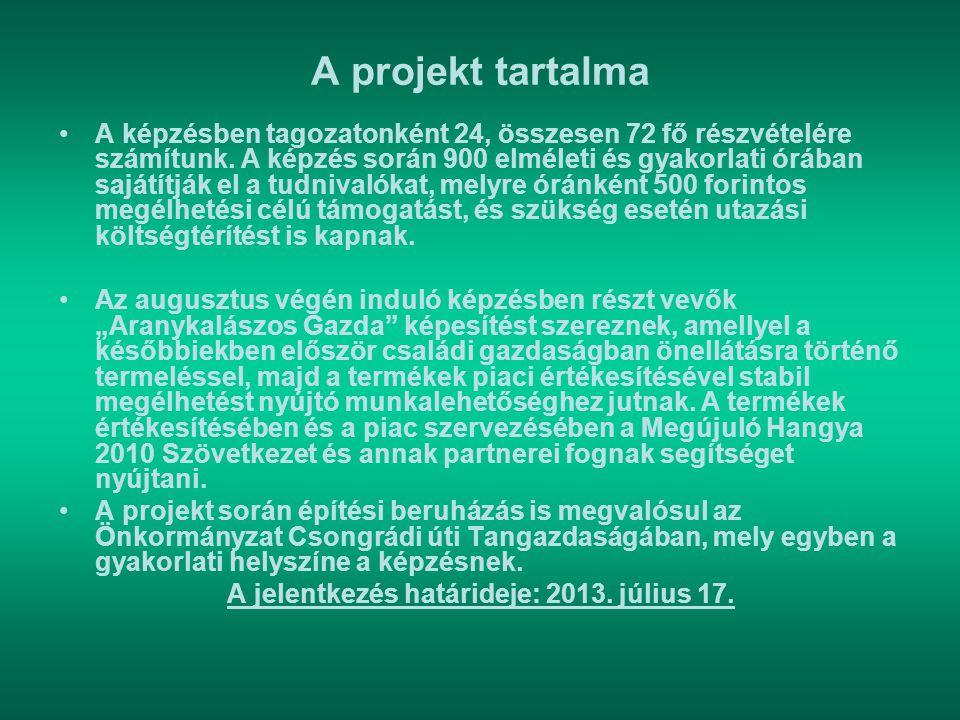 A jelentkezés határideje: 2013. július 17.